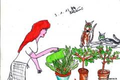Pflanzen versorgen030113