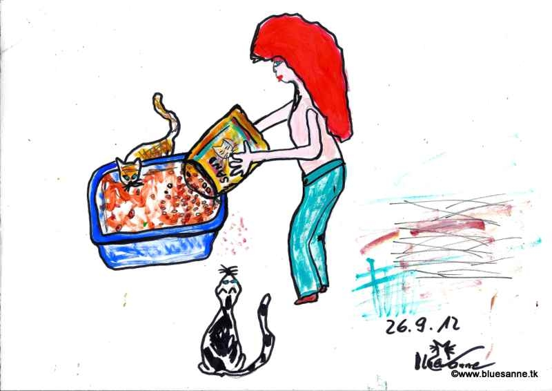 Katzen mögen es sauberBK260912