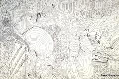 Shell10.09.201344 x 31 cmTinte auf Papier
