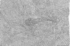 Snail09.07.201629,4 x 21 cm Tinte auf Papier