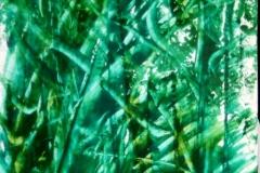 Spinach02.09.201144 x 30 cmGouache auf Papier