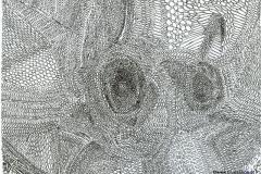 Fly 30.09. - 01.10.200129,7 x 21 cmTinte auf Papier