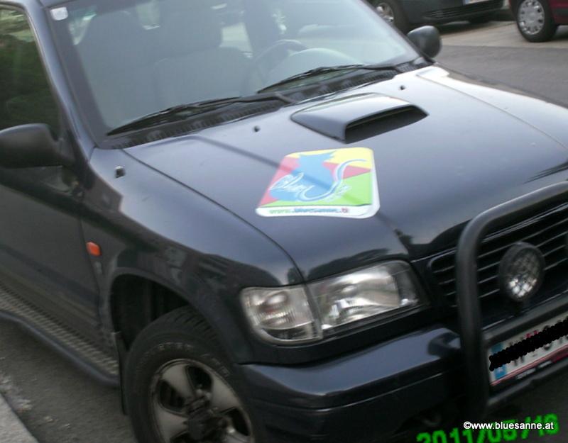 Bluesanne-Logo auf Auto