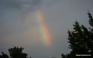 Regenbogen 260814